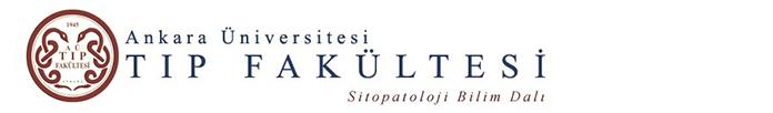 Sitopatoloji Bilim Dalı